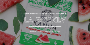 Kanha Watermelon Gummies Named Essential Edible for the holidays